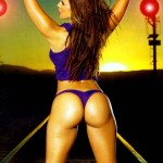 vida-guerra-butt-tribute-47
