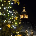 VATICAN-CHRISTMAS-TREE