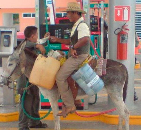 Soloenvenezuela: Ponle gasolina al burro