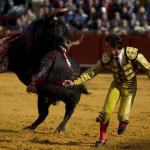 Spanish matador Diego Urdiales runs away from the bull during a bullfight in Seville