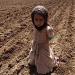 A girl stands on a plot of farmland in the area of Bani Matar