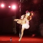 Contestant Yu Wen competes during the 2nd China Pole Dance final in Tianjin municipality