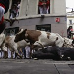 Cebada Gago ranch fighting bull falls on Estafeta corner during third Running Of The Bulls at San Fermin festival in Pamplona