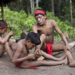 A Yanomami Indian boy removes chiggers, the larvae of mites, from a fellow Yanomami at the community of Irotatheri