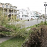 A large tree that was blown down by Hurricane Sandy lays across the road on Kearney street in Cape May