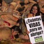 SPAIN-ANIMALS-PROTEST