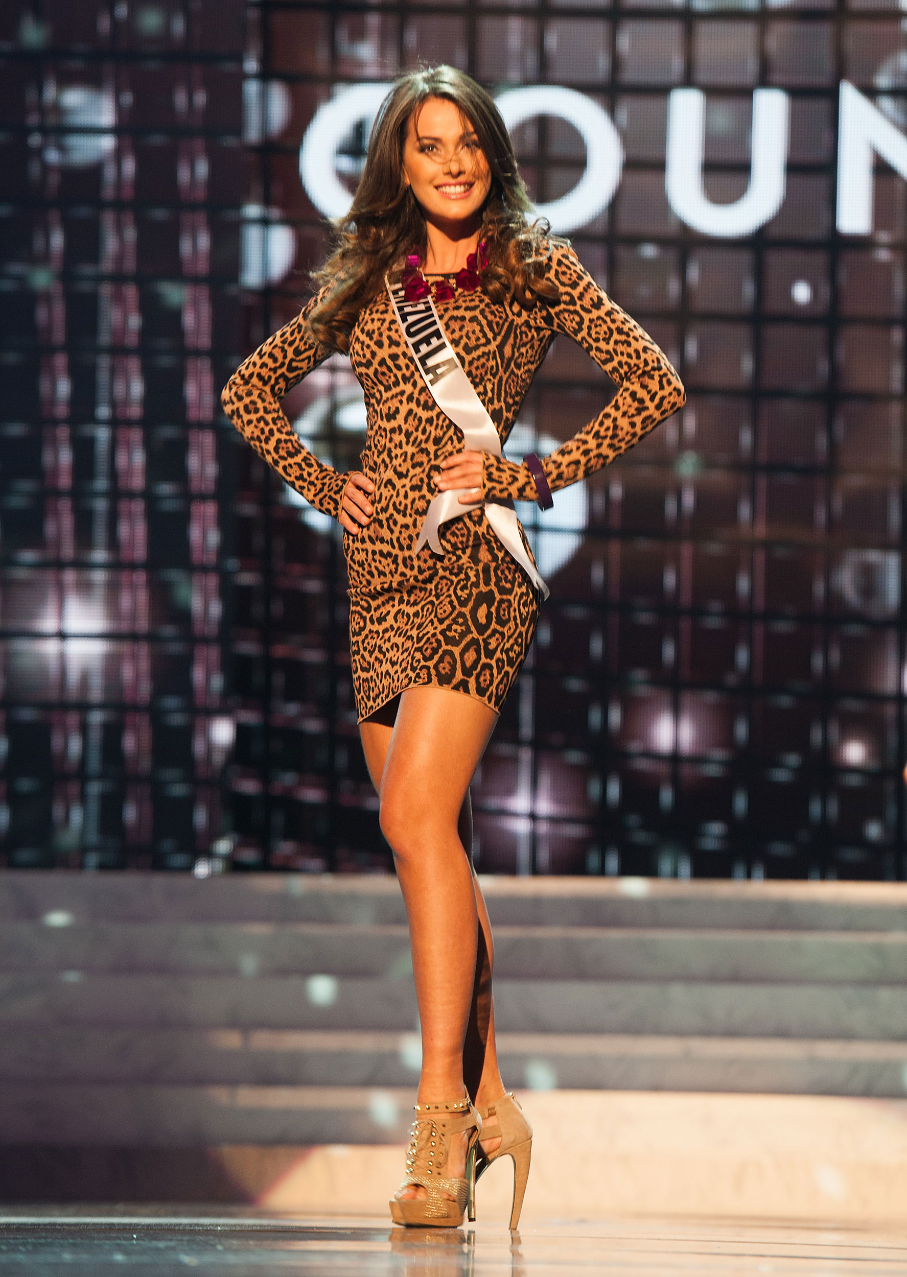 Miss Venezuela 2011 Irene Esser