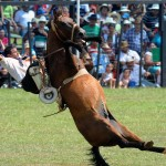 PARAGUAY-RODEO