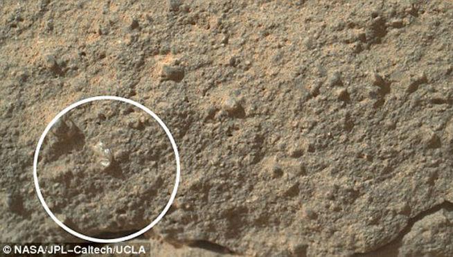 flor-Marte-vida-planeta_rojo-rastros-NASA-Guy_Webster-descubrimiento_MDSIMA20130105_0046_4