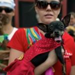 BRAZIL-RIO-CARNIVAL-ANIMALS