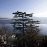 A view of Castel Gandolfo lake is seen from inside the summer residence of Pope Benedict XVI in Castel Gandolfo