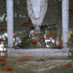 A statue of the Virgin Mary is reflected in a pond, where the pope in the past has been seen feeding the fishes, inside his summer residence of Castel Gandolfo
