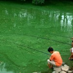 Chinese Water Pollution (1)