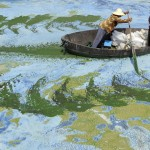 Chinese Water Pollution (14)