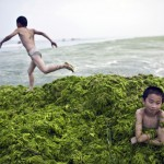 Chinese Water Pollution (17)