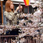 JAPAN-WEATHER-LIFESTYLE-BLOSSOMS