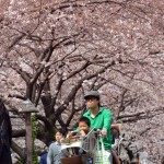 TOPSHOTS-JAPAN-WEATHER-LIFESTYLE-BLOSSOMS