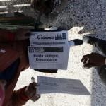 A man buys a newspaper in Havana