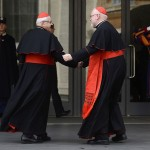 Cardinal Reinhard Marx of Germany greets Cardinal Miloslav Vlk of Czech Republic as they arrive for a meetingat the Vatican