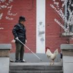 HEALTH-FLU-CHINA