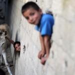 PALESTINIAN-ISRAEL-GAZA-REFUGEE