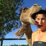 Animals-attacking-women10
