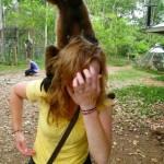 Animals-attacking-women13