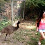 Animals-attacking-women16