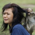 Animals-attacking-women22