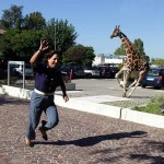 Animals-attacking-women8