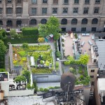 New-York-City-roof-top-lounge-garden-pool-01