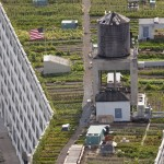 New-York-City-roof-top-lounge-garden-pool-010