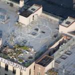 Williamsburg, Brooklyn: Raising plants for a rooftop garden in Williamsburg.