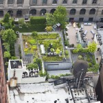 New-York-City-roof-top-lounge-garden-pool-017