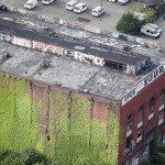 New-York-City-roof-top-lounge-garden-pool-018