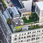 New-York-City-roof-top-lounge-garden-pool-04