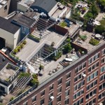 New-York-City-roof-top-lounge-garden-pool-06