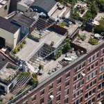 New-York-City-roof-top-lounge-garden-pool-06