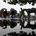 INDIA-WEATHER-HORSE