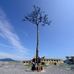 JAPAN-LIFESTYLE-TOURISM-NUCLEAR-DISASTER