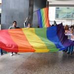 PROTESTA DE LOS HOMOSEXUALES FRENTE A LA ASAMBLEA NACIONAL (4)