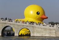 An inflated Rubber Duck by Dutch conceptual artist Florentijn Hofman floats on the Kunming Lake at the Summer Palace in Beijing