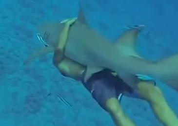 IMPRESIONANTE: Hombre que abraza a un tiburón