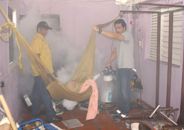 Mardo fumigando2