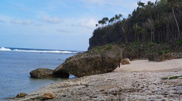 Las curiosas rocas que forman una enorme ballena (Foto)