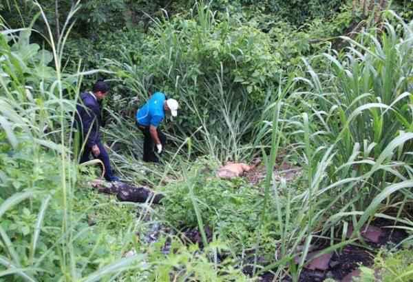 Foto El Fortín de Guayana