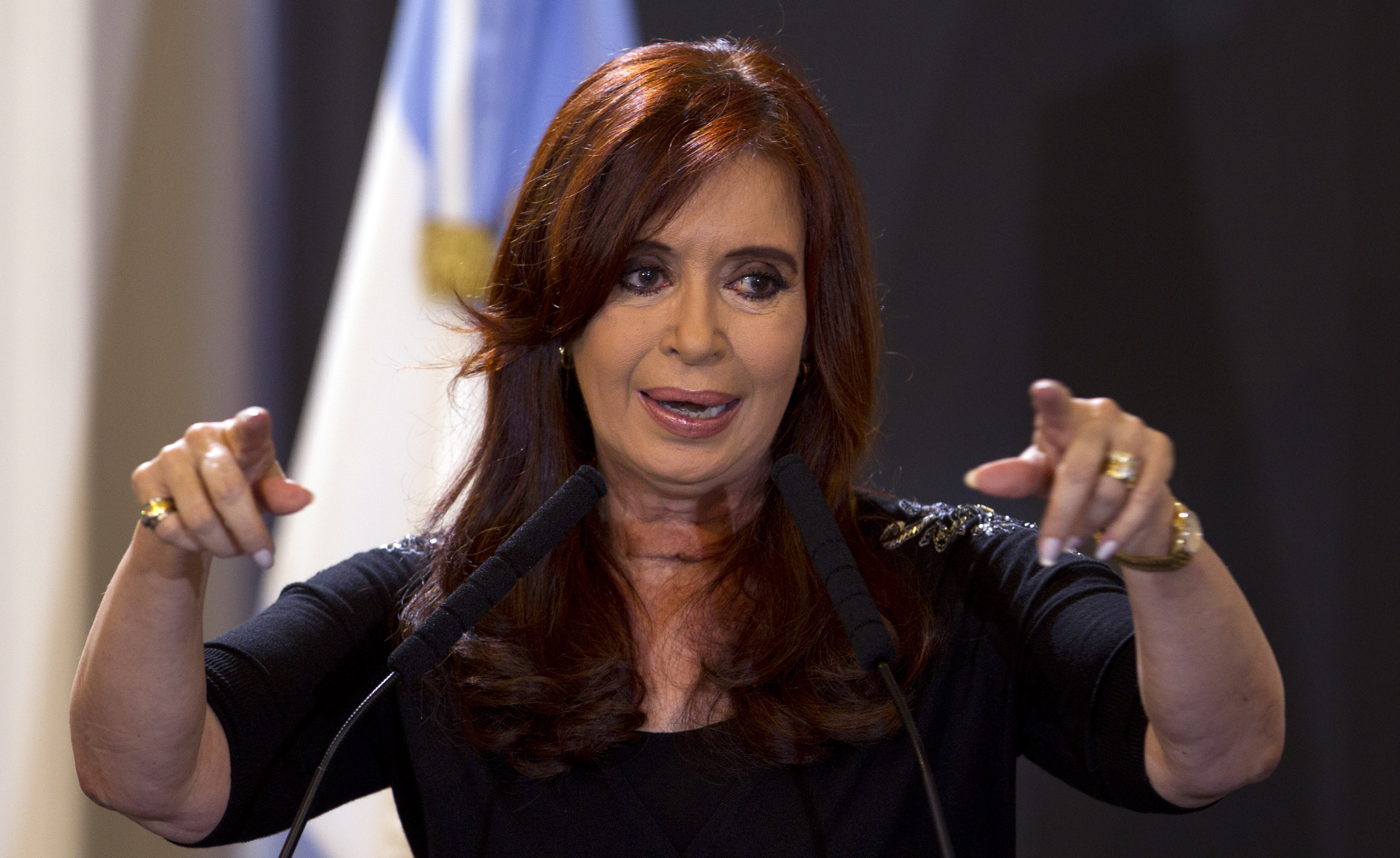 Argentina Fernandez