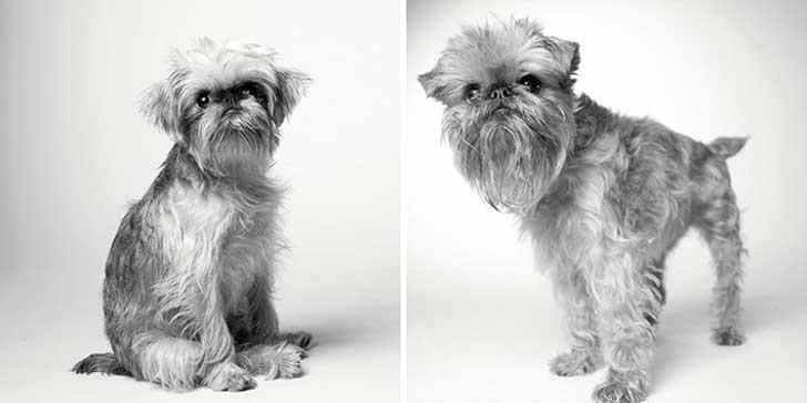 Briscoe 1 año y 10 años