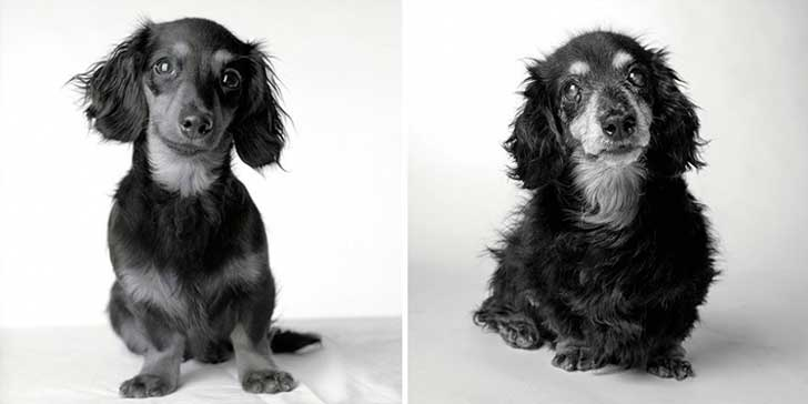 Lily 8 meses y 15 años