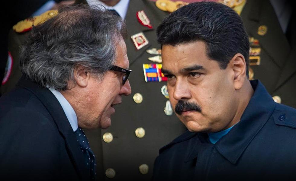 Almagro_Maduro980